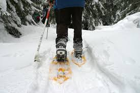 Excursion ski de fond ou raquette @ ski owl's Head | Mansonville | Québec | Canada